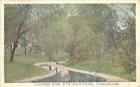 Youngwood Pennsylvania~Greetings~Mill Race Park Scene~1923 Postcard