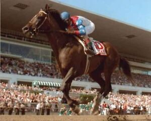 CIGAR AMERICAN CHAMPION THOROUGHBRED RACE HORSE JERRY BAILEY 8X10 PHOTO