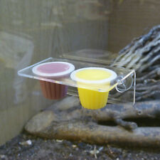 Reptile World Acrylic Double Feeding Ledge for Reptile Jelly Pots, Holder