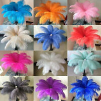 10pcs Large Ostrich Feathers Costume Craft Xmas Birthday Wedding Party 20-30CM
