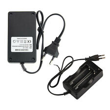AC 110V 220V Dual Cargador For 18650 3.7V Rechargeable Li-Ion Battery EU OK