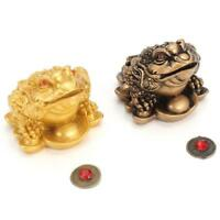 Feng Shui Money Fortune Wealth Chinese for Frog Toad Coin Home Office Decor