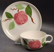 VINTAGE Stetson Rio Apple China Cup and Saucer Mint Condition