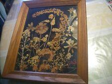 """Magnificent Vintage 14""""x17"""" Dried, Pressed Floral Framed Art Interesting, L@K!"""