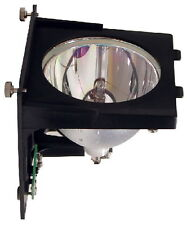 DLP Projector Replacement Lamp Bulb Module For Optoma BL-FU220A THEME-S HD6800