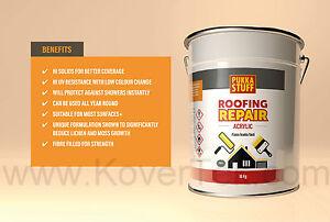 Pukka Stuff One Coat Roof Repair Acrylic Asbestos Felt gutters cromapol UV