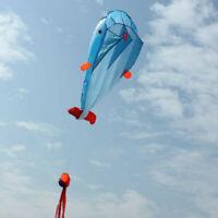 2m Huge 3D Kite Frameless Soft Parafoil Giant Dolphin animal Kite Children's toy