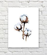 "Cotton Art Print Watercolor 11"" x 14"" by Artist DJR"