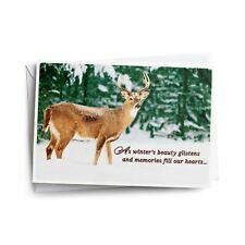 Winter's Beauty Deer - 18 Christmas Boxed Cards