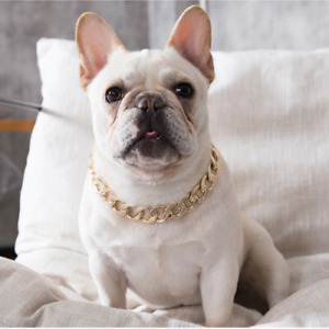 Gold Chain Collar For Dogs Puppy Pet Accessories Frenchie Choker Cat Props