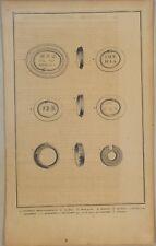 Hieroglyphen MOLUKKEN Original Kupferstich um 1720 ALCHEMIE Quroboros Schlange