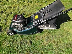 hayter hawk lawn mower