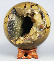 Polished DRAGON SEPTARIAN Calcite GEODE SPHERE EGG -Madagascar
