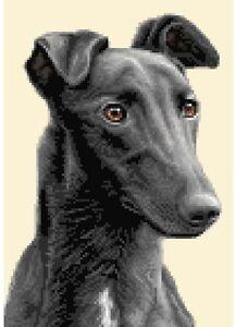 BLACK GREYHOUND dog, complete counted cross stitch kit *Jann Designs