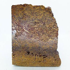 Calligraphy Jasper, Script Stone, over 4 lbs, cabbing rough, lapidary, #R-1719
