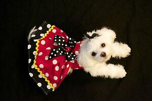 Medium Miss Minnie Dotsl Dress - Dog dress clothes- Puppy Apparel