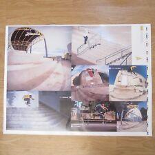 Primitive Skateboarding Diego Najera Pro Poster