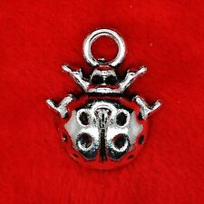 12 X Plata Tibetana Ladybird Ladybug encanto colgante Molduras la fabricación de joyas