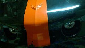 White halo Angel Eye Fog Lights Kit For 1993-2002 Pontiac Firebird Trans Am LT1