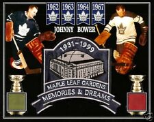 039c15db67d JOHNNY BOWER PHOTO MEMORIES   DREAMS PATCH MAPLE LEAF GARDENS GREEN RED SEAT