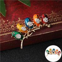Enamel Jewelry Bird Brooch Gifts Fashion Pin Animal Rhinestone Women