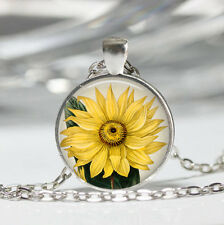 Sunflower photo Tibet silver dome Glass Cabochon Necklace chain Pendant #485