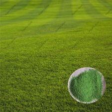500pcs zoysia grass Seeds Lawn Seeds Fresh Green Soft Runner Plant