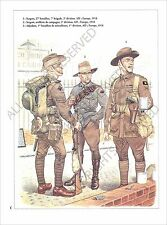 PLANCHE UNIFORMS PRINT WWI AUSTRALIA ARMY AUSTRALIE Royal Australian Europe