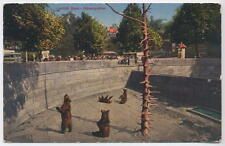 1925 Swiss Postcard Bern Bear Pit by Edition Photoglob, posted Zürich
