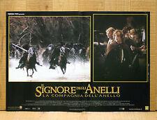 IL SIGNORE DEGLI ANELLI COMPAGNIA DELL'ANELLO fotobusta poster Lord Of Ring X14
