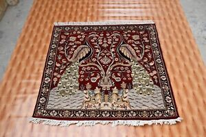 Oushak Peacock Design Hand-Knotted Oriental Square Rug Decor Wool Carpet 4x4 ft