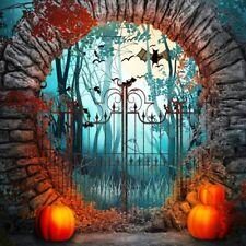 Pumpkin Lantern Halloween Horror Backdrop 8x8ft Background Studio Props Photo