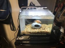 5 Gallon Tank With Accesories