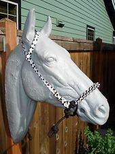 Indian Bosal w/ Puppy Paws Print One Ear Headstall