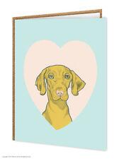 Vizla / amoureux de chiens/ ANNIVERSAIRE/CARTE DE VOEUX/brainbox CANDY/MIGNON