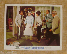 Walt Disney Lobby Card, The Ugly Dachshund, 1965, Technicolor, Disney