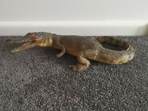 Genuine Taxidermy Baby Crocodile
