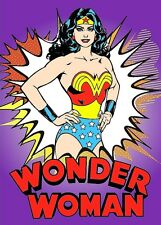 Wonder Woman TV Series 70's #2 Sticker or Magnet