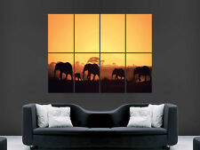 AFRICA ELEPHANTS SAFARI SUNSET  GIANT WALL POSTER ART PICTURE PRINT LARGE