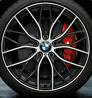 "BMW OEM F22 2 Series Coupe BMW 19"" LA Wheel M Double Spoke 405"