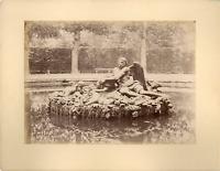 France, Versailles, bassin de Saturne vintage albumen print. Tirage albuminé