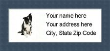 """Border Collie  Return Address Labels  - Personalized """"BUY 3 GET ONE FREE"""""""