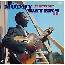 Vinili muddy waters blues
