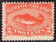 NEWFOUNDLAND CANADA 1880/96 STAMP Sc. # 48 MH FISH