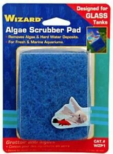 Penn Plax Wizard Algae Scrubber Pad for Glass - WZP1