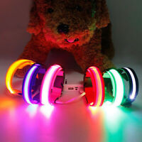LED Light Up Dog Pet Night Bright Luminous Safety Collar Leash Necklace USB Glow