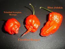 3 Sorten Chili Samen Carolina Reaper Trinidad Scorpion Moruga Bhut Jolokia