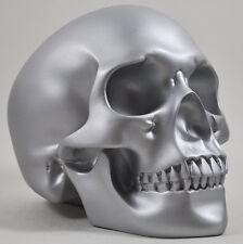 Large Silver Skull Statue Sculpture Human Head Figure Design Clinic NEW 16092