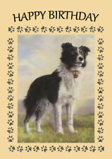 BORDER COLLIE STANDING DOG GREAT BIRTHDAY GREETINGS NOTE CARD