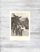 Antique 1920's Making Friends H A Roberts Photograph MULE Farm Child Grandfather